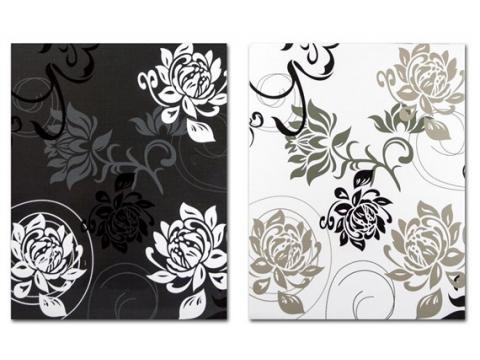 B46200 BLACK&WHITE memo 10x15/200 slik