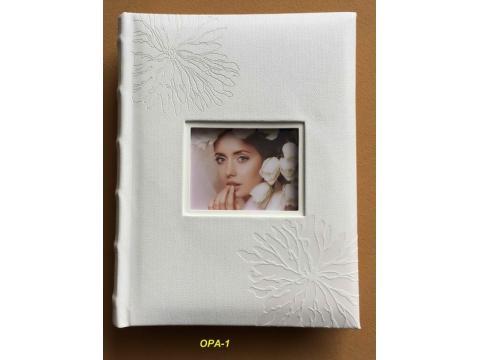 BB18/100 OPA-1 vložni 13x18/100 slik