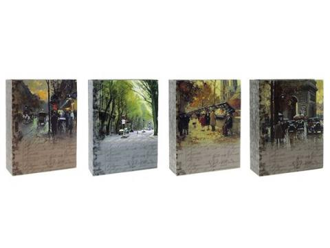 MM46100 PAINT vložni 10x15/100 slik